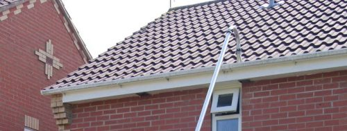 Roof Cleaner in Kendal